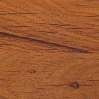 Sokal oak